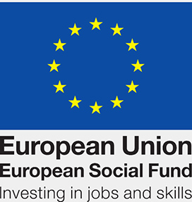 log for the European Social Fund