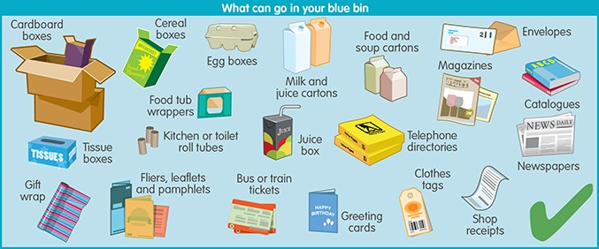 What can go in your blue bin