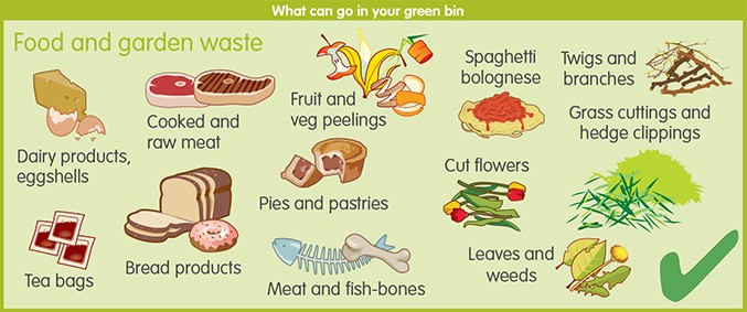 Things that can go in your green recycling bin