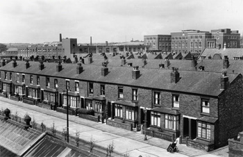 Quilter Grove, Blackley, 1958